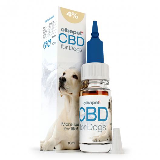 Olio CBD 4% per Cani